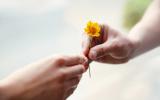 Leren vergeven: hoe