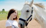 Bach bloesem Mix 120 Stress bij paarden